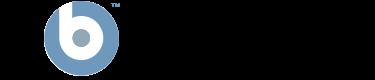 bigfix_logo